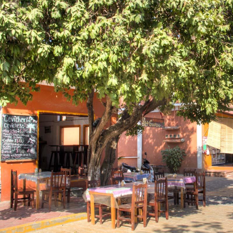 Bars & Restaurants in Zipolite